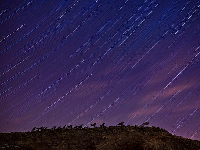Gorgeous night sky time lapse