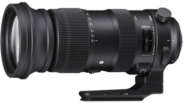 Sigma 60-600mm zoom