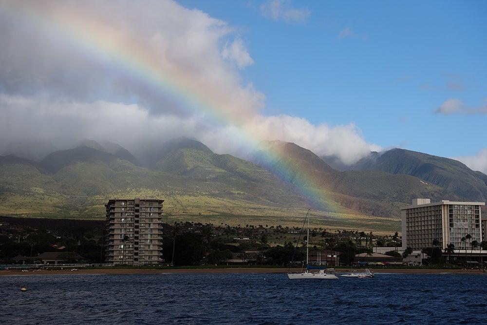 rainbow sample image