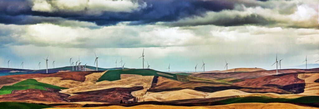 """""""Windmills"""