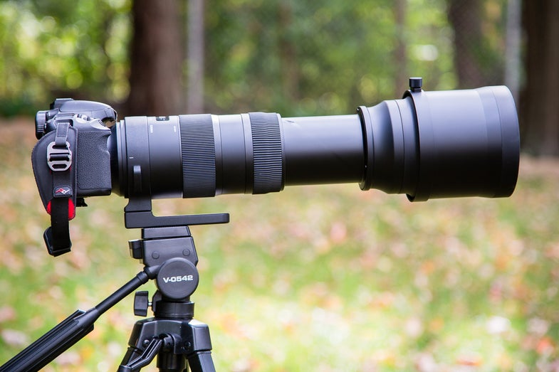 Sigma 150-600mm OS Zoom Lens First Impressions Review