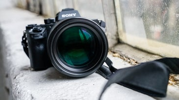 Sony G Master Lens Hands-On Sample Image Gallery