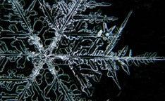 Snowflake promo