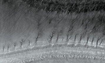 Backstory: Imaging Mars
