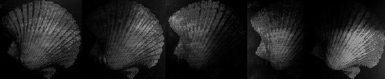 Reflectance printing