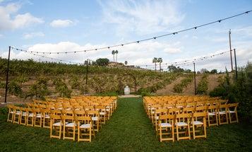 This Service Guarantees Rain-Free Wedding Photos for $100K