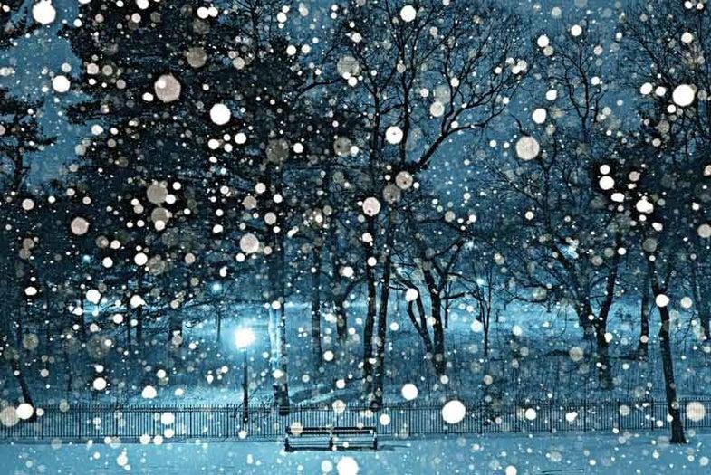 Snow Exposures