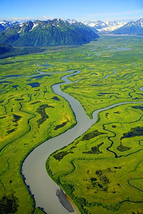 """""""Before-They-re-Gone-The-Copper-River-Delta-is-a-m"""""""