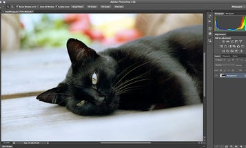 Adobe Creative Suite 6 Available Today, Creative Cloud Coming May 11