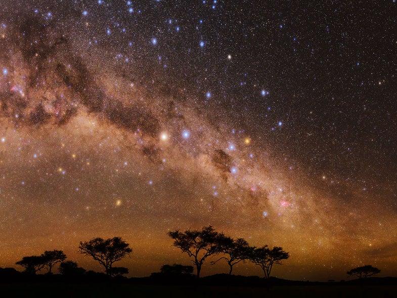 Night on the Serengeti