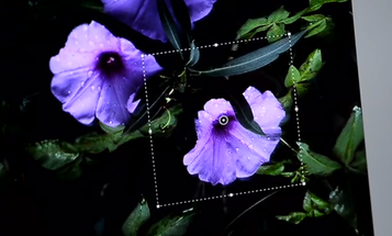 """Adobe Once Again Teases """"Camera Shake Reduction"""" Photoshop Feature"""