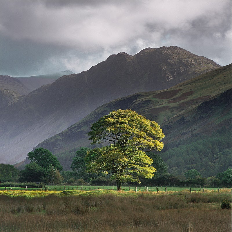 """""""Buttermere,"""