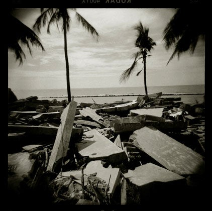 """Q.-Sakamaki-Olivier-Rebbot-Award-Tsunami-destr"""