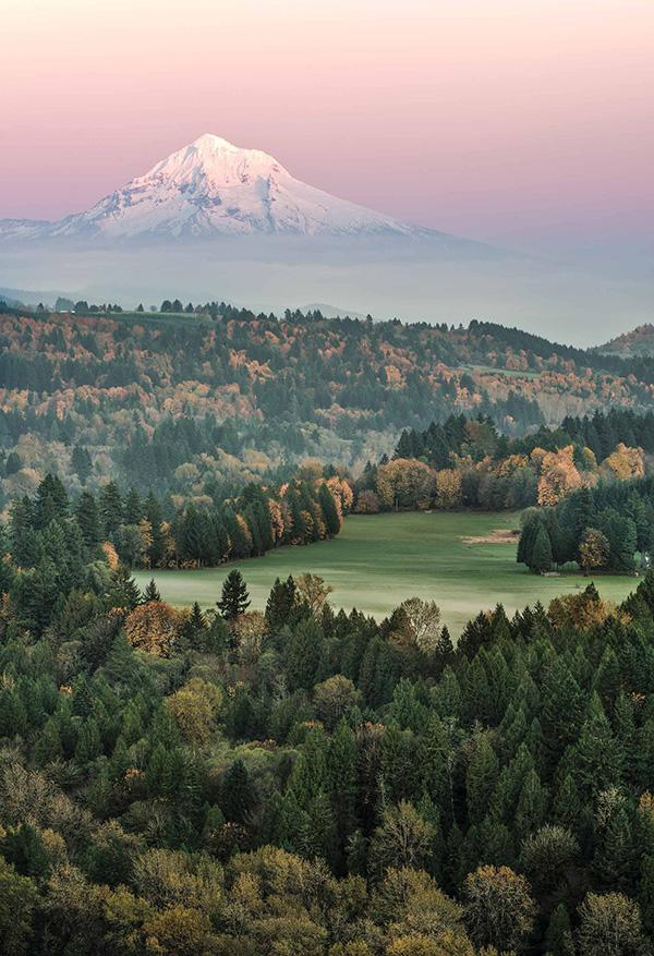 Menor Series: Oregon