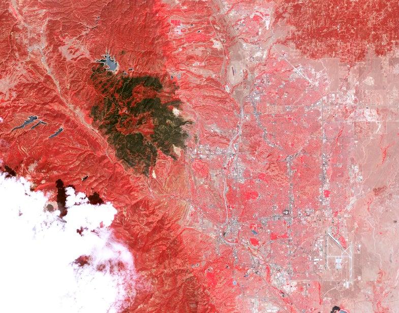 Colorado wildfire scar