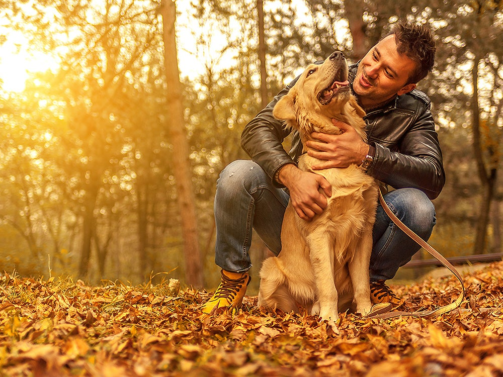 man and dog in autumn leaves