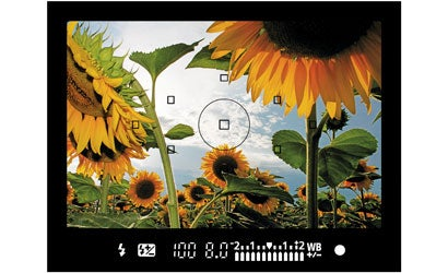 How-to-Read-a-Viewfinder