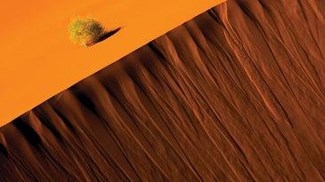 Sand dune, Sossusvlei, Namib-Naukluft National Park