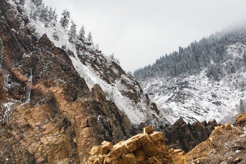 blizzard02.jpg