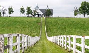 Photo Workshop: Kentucky