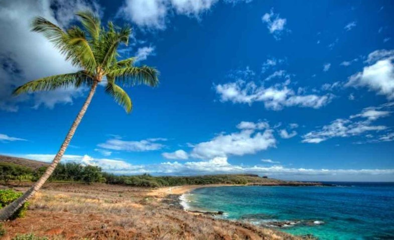 Photo Workshop: Maui Video 40% off