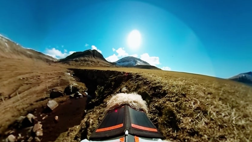 Sheep Cameras for Google Street View