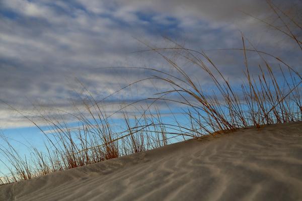 httpswww.popphoto.comsitespopphoto.comfilesimages201505best-of-white-sands-10.jpg
