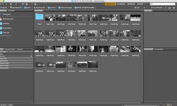 Adobe Bridge CC 6.2 Promises Faster Loading, Better Importing From Macs
