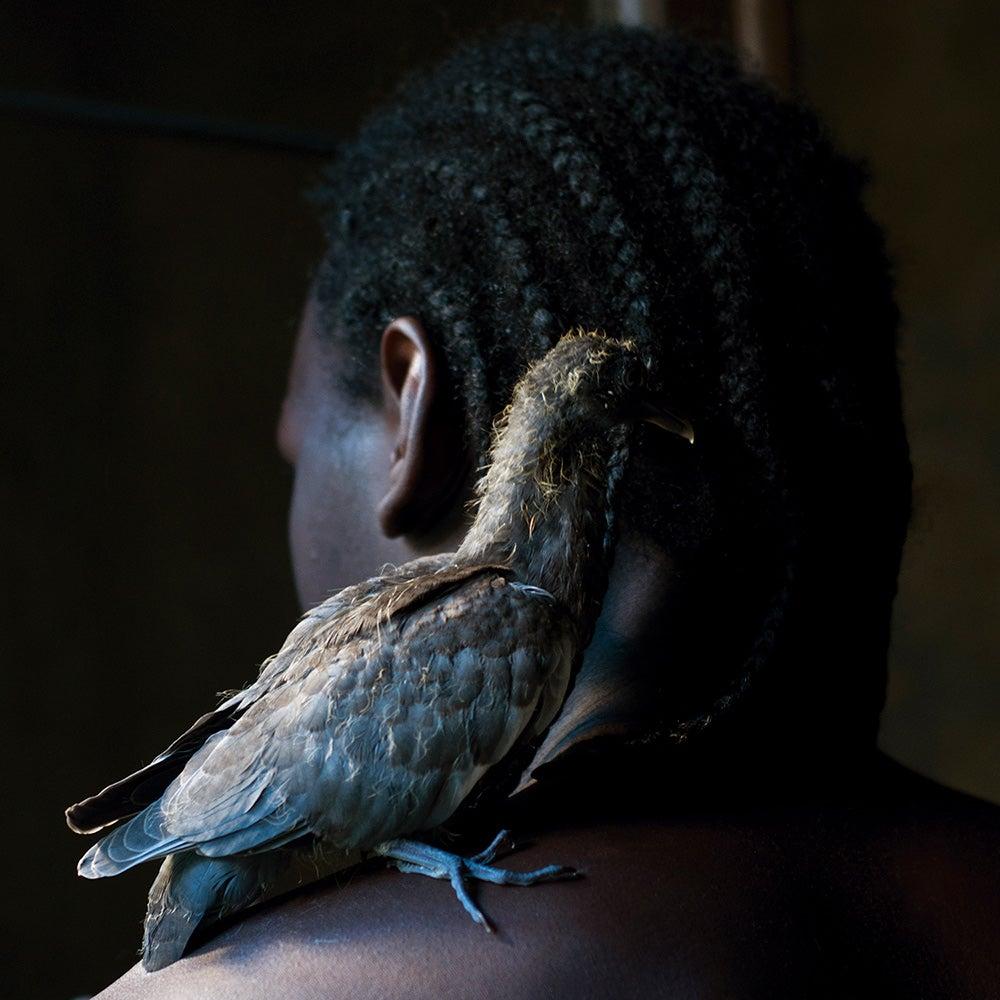bird sitting on shoulder