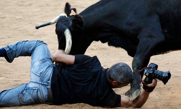 Photographer vs. Bull: Camera Makes it Out Safely
