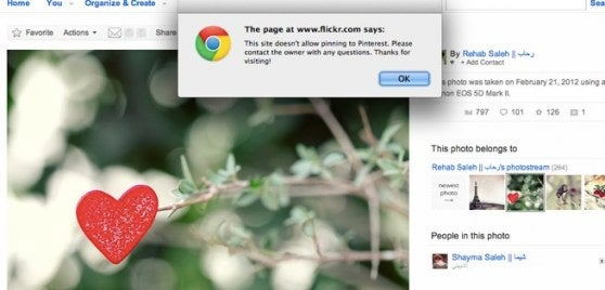 Flickr pintereist