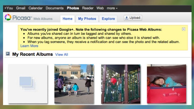 Picasa Google+