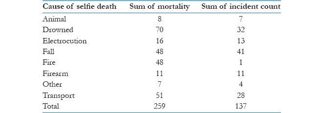 selfie related death numbers