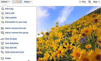 Flickr Picks Aviary For Photo Editing Solution