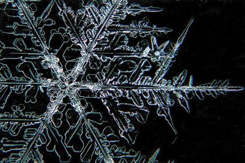 snowflake close up