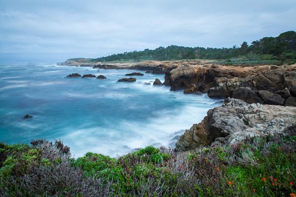 Mentor Series: California Coast