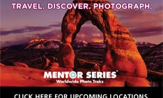 Pop Photo Workshops: Mentor Series