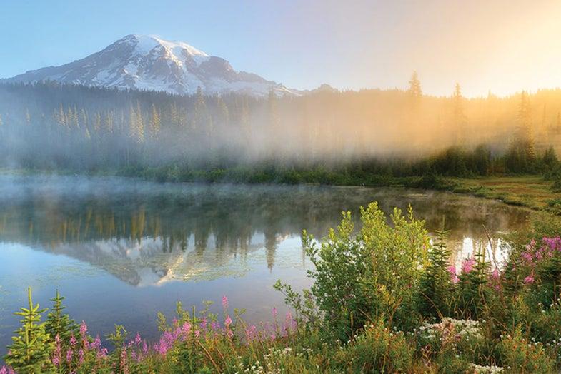 Photo Workshop: Mt. Rainier National Park