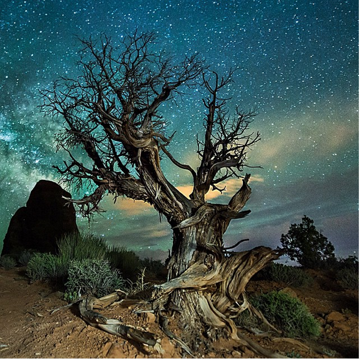 Congratulations To Our Mentor Series Travel Photo Contest Winner, Stephen Ippolito