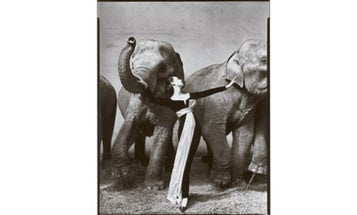 Matthew Rolston's Inspirations: Fashion