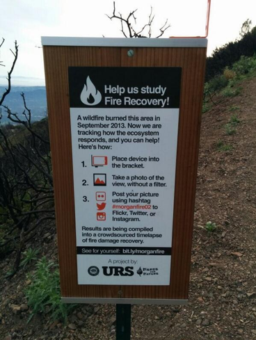 Smartphone Photos Track Wildfire Regrowth