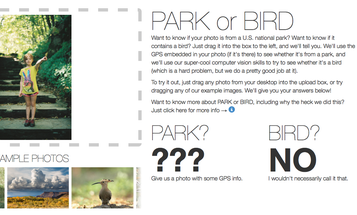 Flickr's Park or Bird Tool Tells You Whether Your Photo Contains a Park or Bird