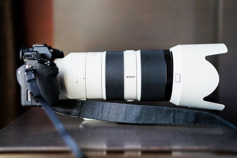 First Impressions: FE 70-200mm F/2.8 GM OSS G Master Lens And 2x Teleconverter