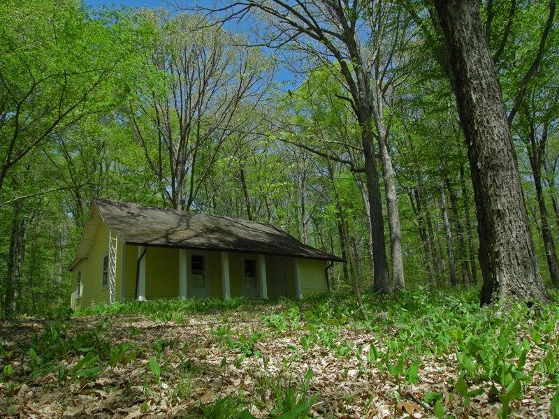 indiana timelapse hut