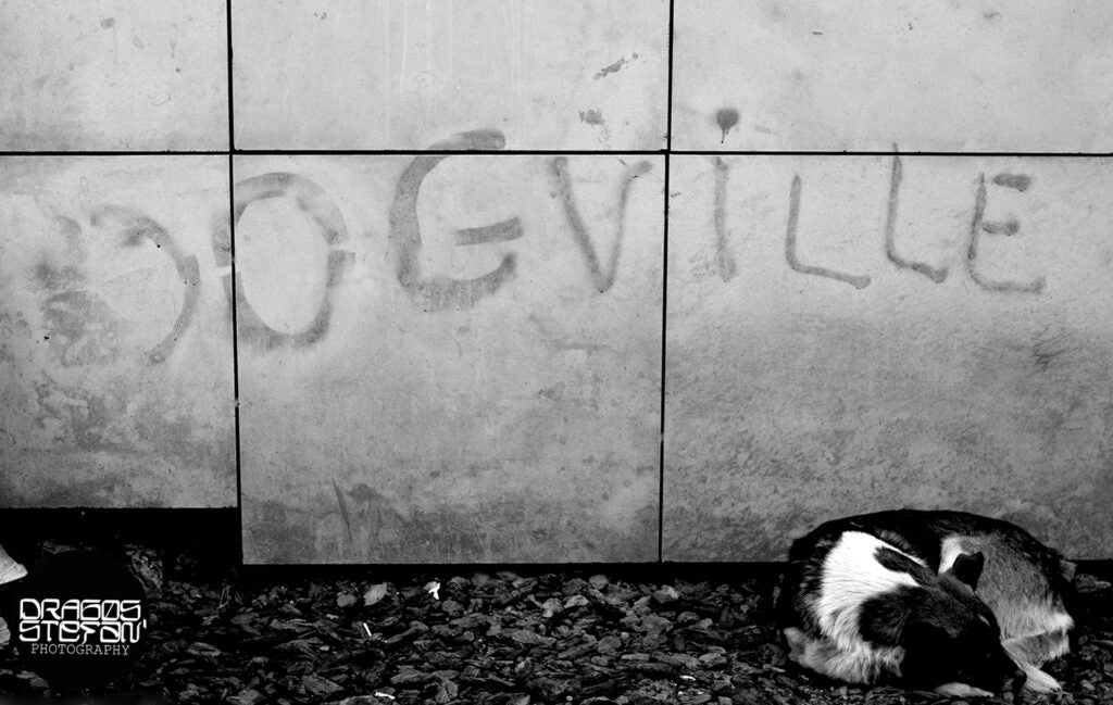 """""""Dogville"""""""