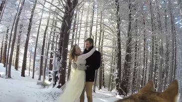 Dog shoots wedding video with a gopro camera