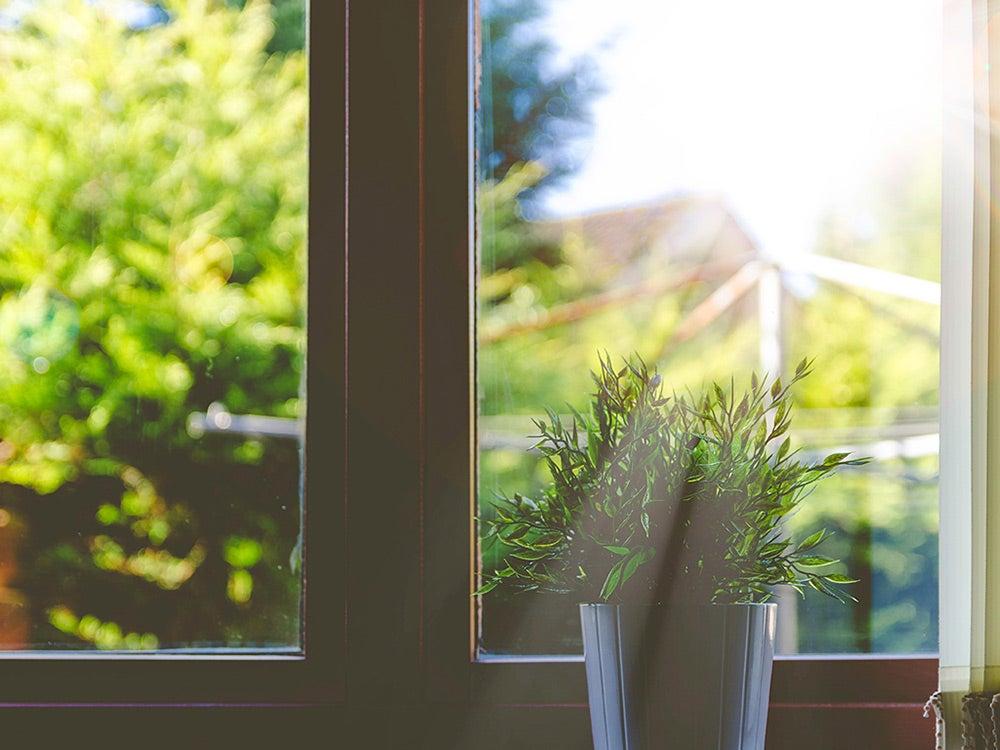 natural outdoor light