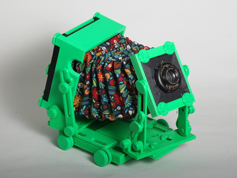 green cameradactyl