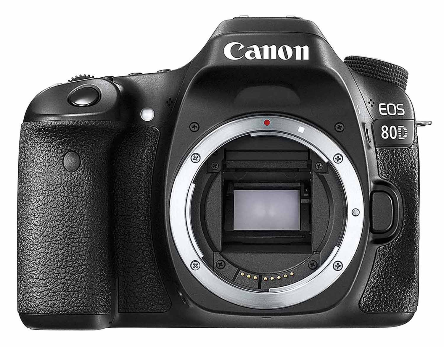 Canon 80D Camera Review