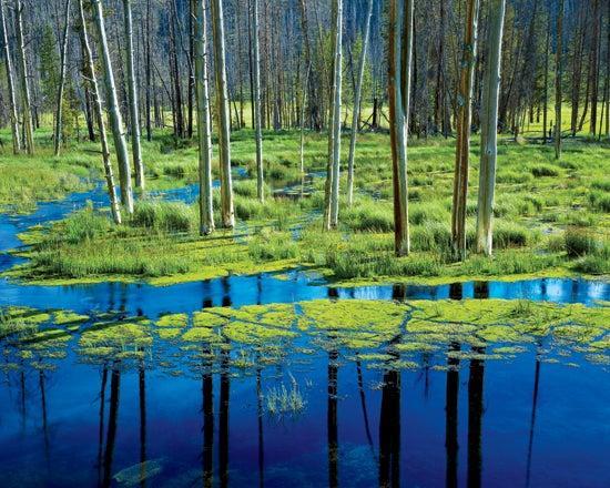 """Rodney-Lough-Jr.-shot-this-evocative-landscape-in"""